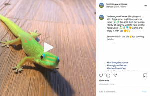 Instagram post 2-min