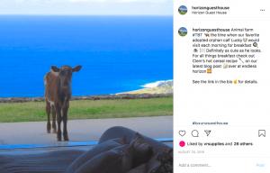 Instagram post 4-min